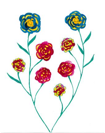 Mikawoz carnations
